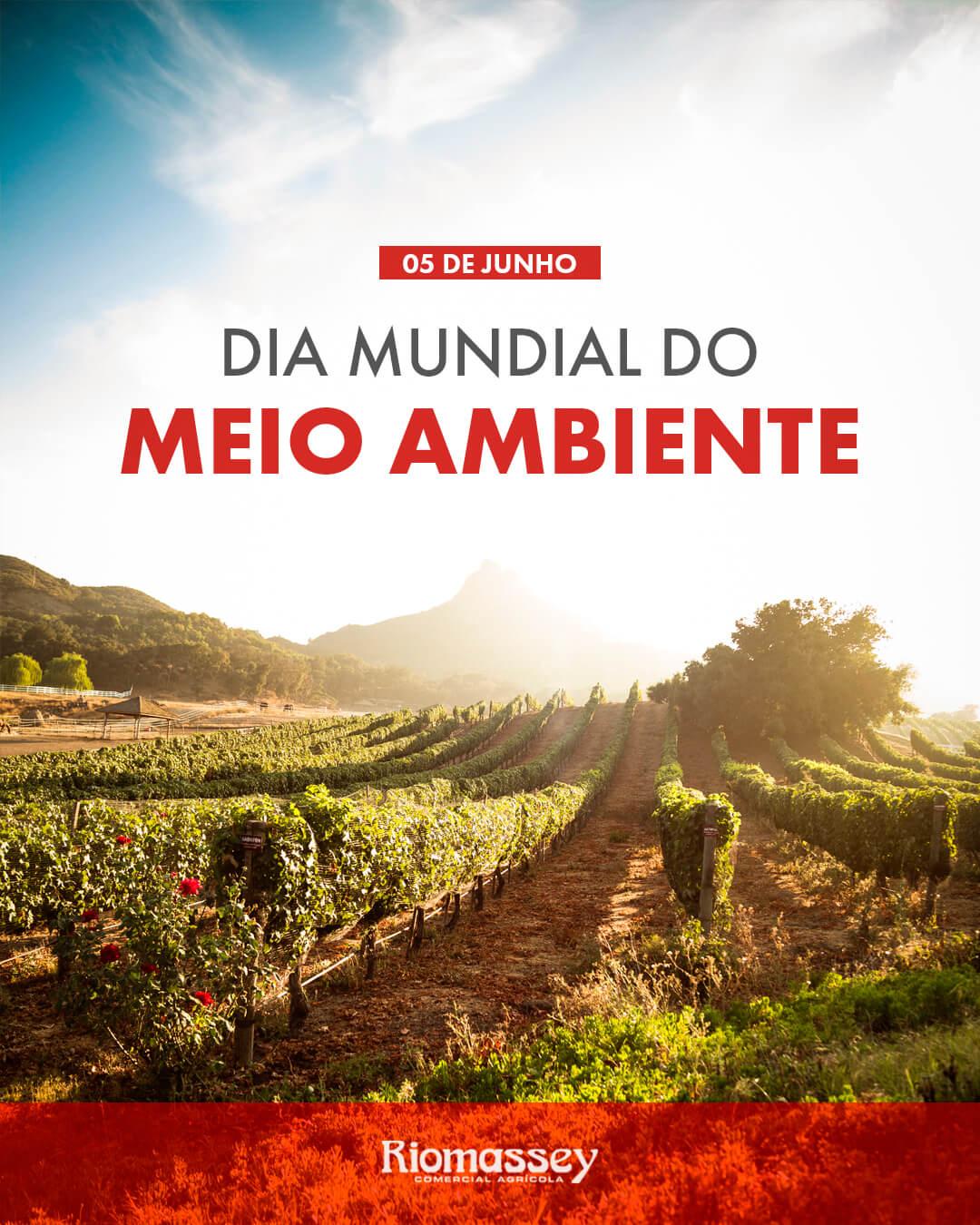 RIOMASSEY - Dia Mundial do Meio AMBIENTE
